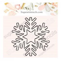 Snowflake PYO cookie...
