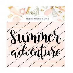 Summer adventure cookie...